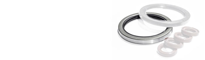 Type C Oil Seals and Rotary Seals at Polymax